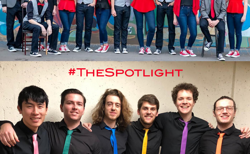 The Spotlight - 01.29.20