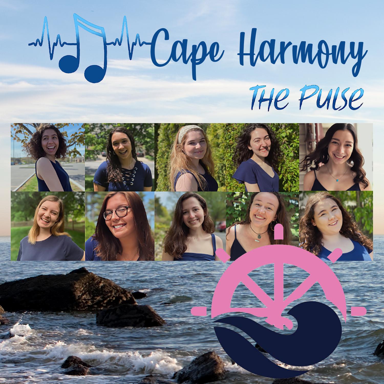 The Pulse - Cape Harmony