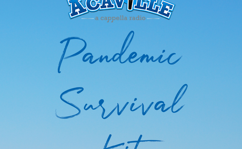 Pandemic Survival Kit